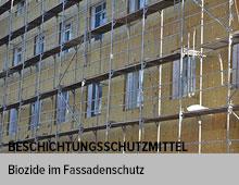 Entscheidungshilfe zur Beurteilung des Biozideinsatzes in Fassadenbeschichtungen